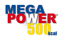 MegaPower500Logo